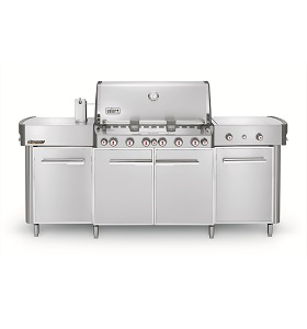 Summit Grill Center Stainless Steel LP NJ #291001